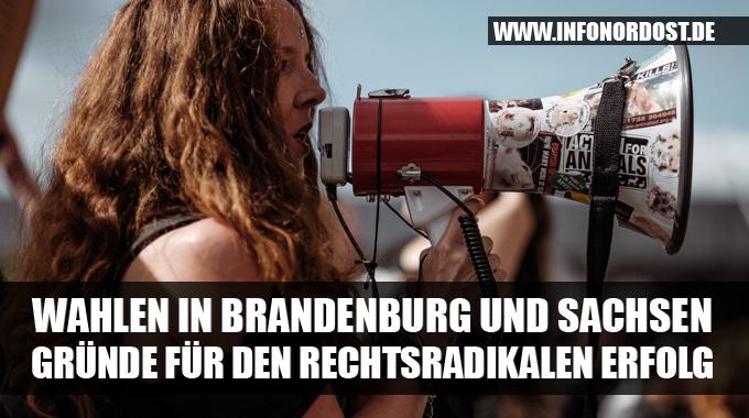 banner_ltw_sachsenbrandenburg2019