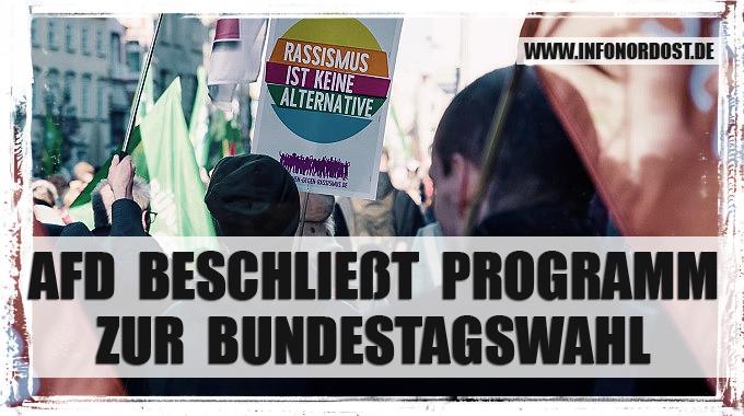 banner_afd_bundestagswahlprogramm2021