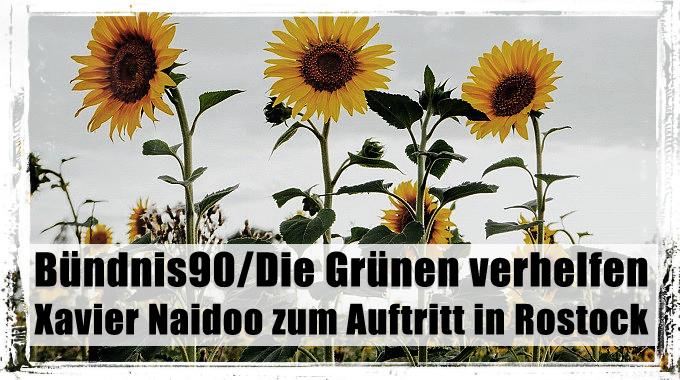 banner_gruenefuerreichsbuergernaidooinrostock